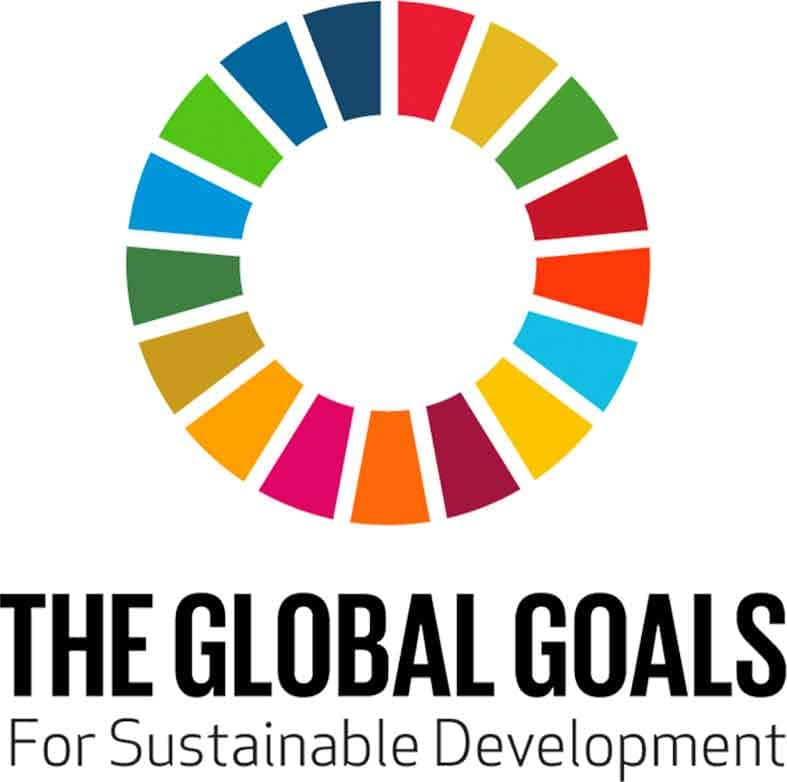 The Global Goals Logo